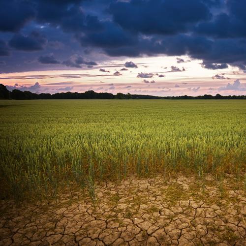 LUMEN® Climate Risk