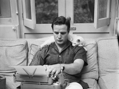 marlon-brando-with-cat-m-400x300