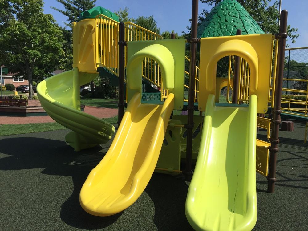 Slides at Brady Park