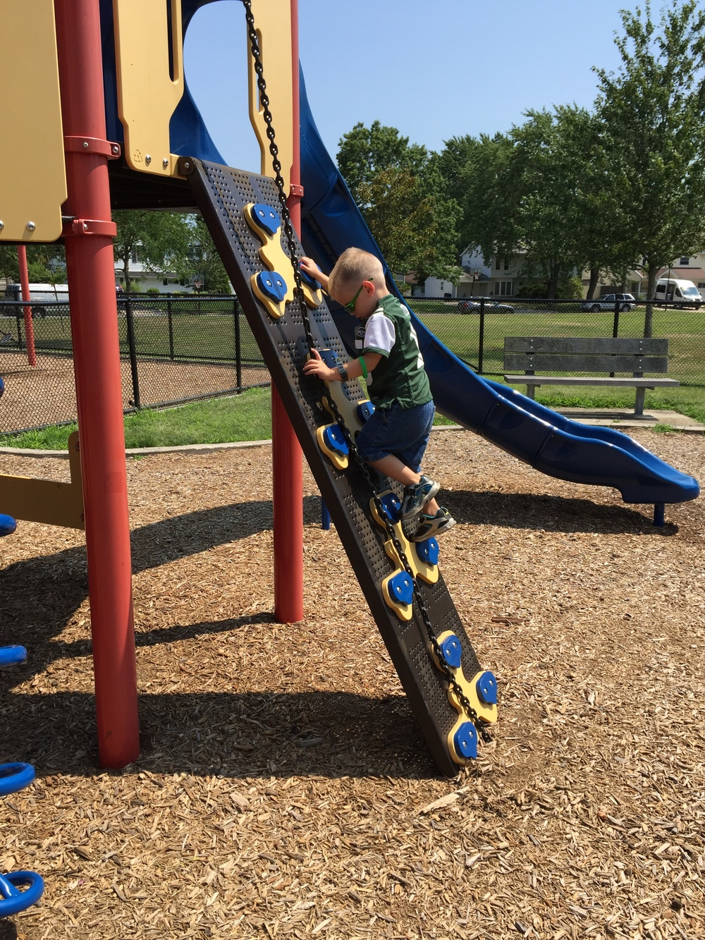 Climber at Red Maple Drive Playground