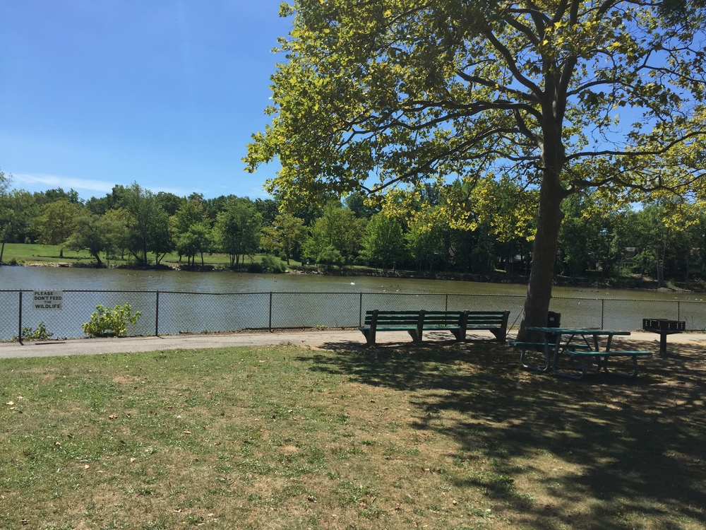 View at Grant Park