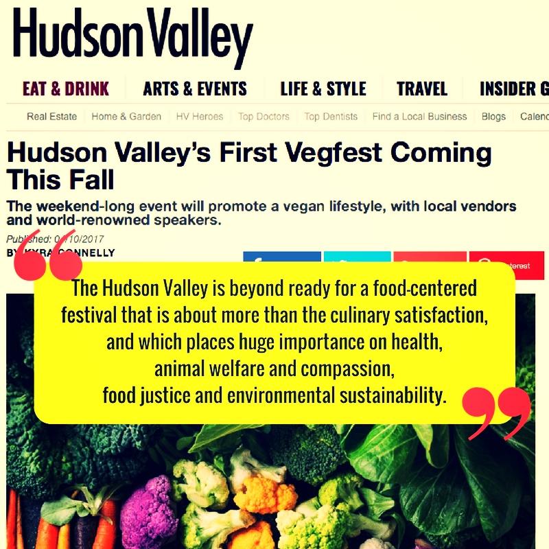 HV Mag Link image.jpeg