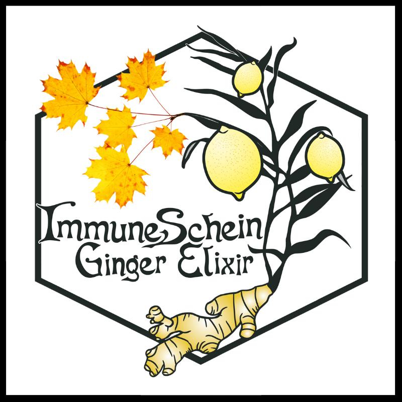IMMUNESCHEIN GINGER ELIXIR