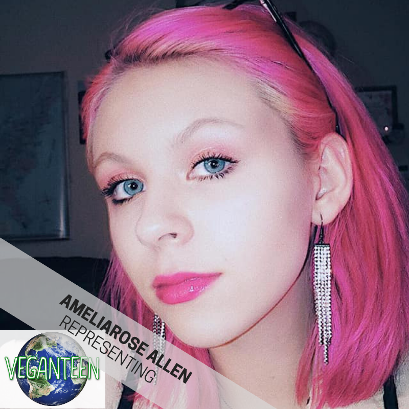 AMELIAROSE ALLEN is a rising singer and actress who graced the stage of HV Vegfest year one! She is an amazing singer as well as voice for the animals via VEGAN TEEN! We re so excited she will be singing from our stage again this year.     http://www.ameliaroseallen.com/