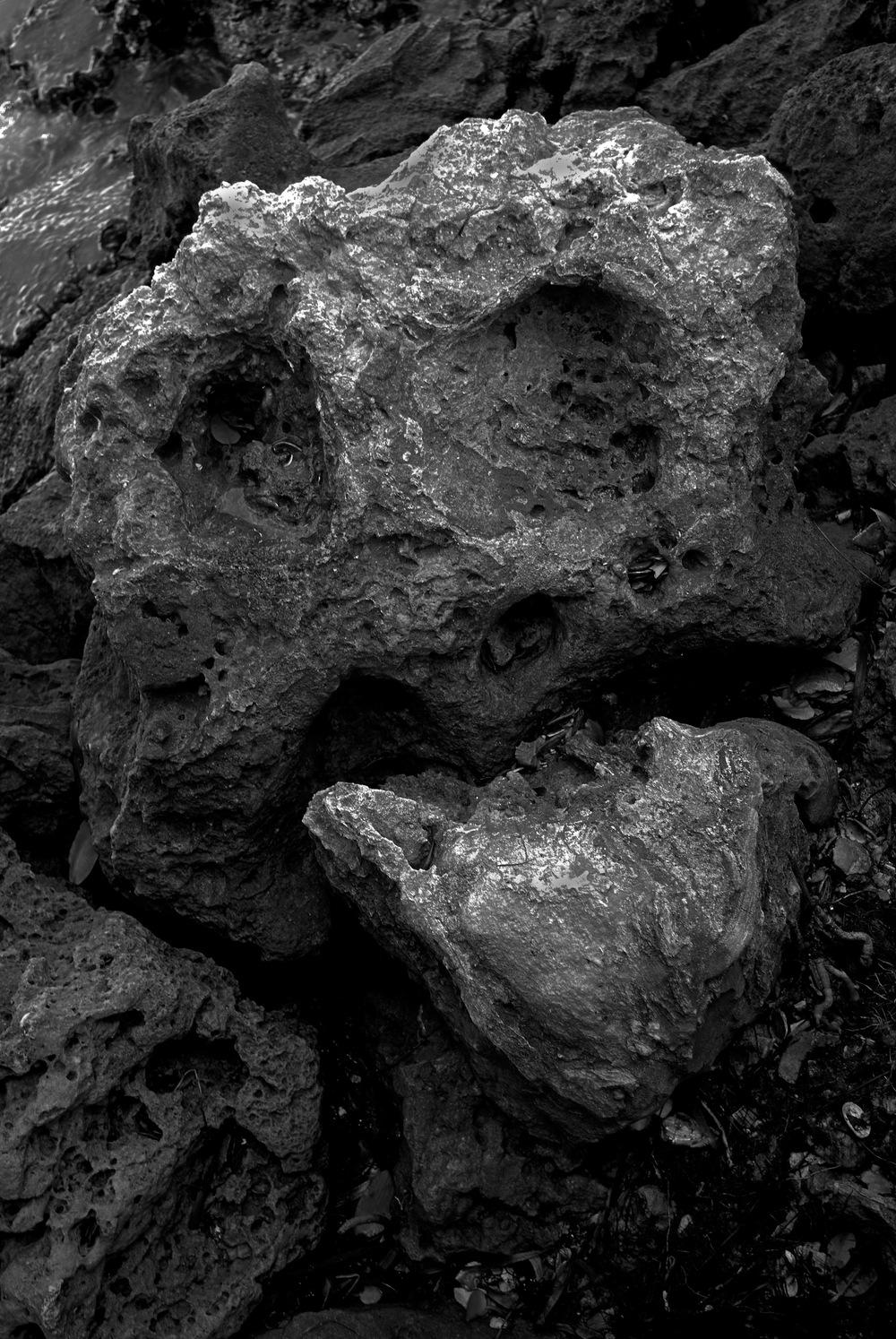 Beach Skull.jpg