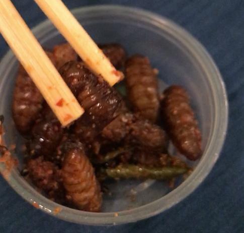 Fried Silkworms!