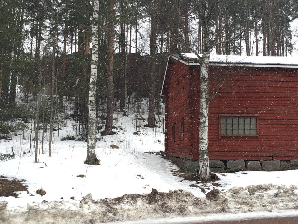 University of   Jyväskylä, woods, cabin, snowstorm / Jyväskylä / 17 Mar 2016