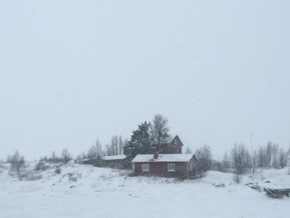 Island in the archipelago off Helsinki's southern side / Helsinki / 24 Jan 2016