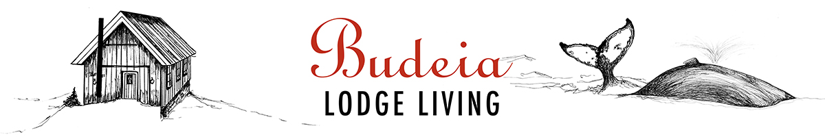 Budeia Lodge Living Tromsø