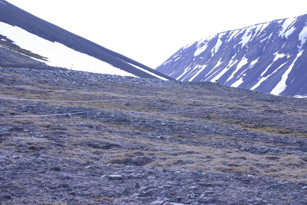 Antarctic soil biodiversity sampling on  Browning Peninsula.