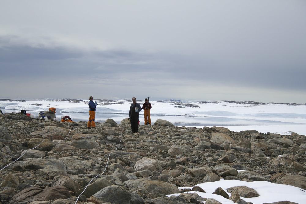 Antarctic soil biodiversity sampling site