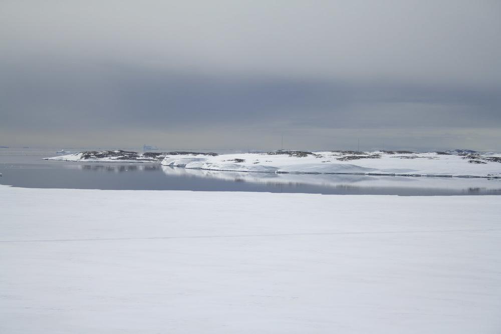 Antarctic soil biodiversity sampling site.