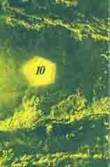 1980, no.10