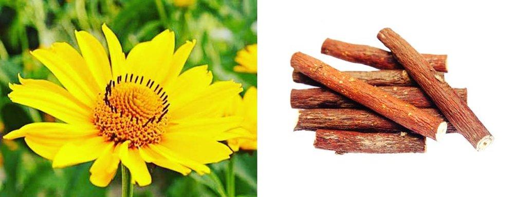 Arnica & Licorice Root
