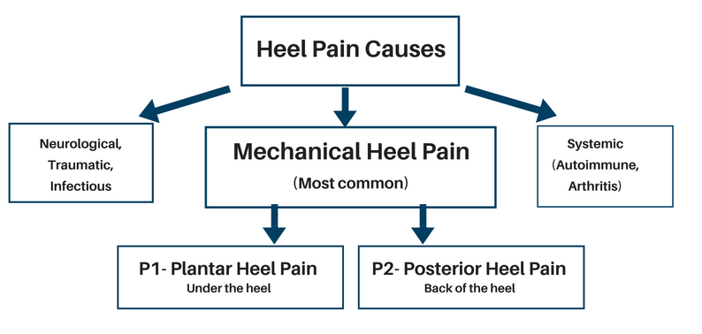 Copy of BOWEN How to refer for Podiatry Flowchart GPs.png