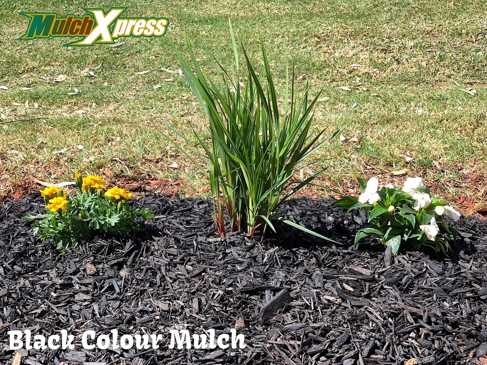 Black Colour Mulch1.jpg