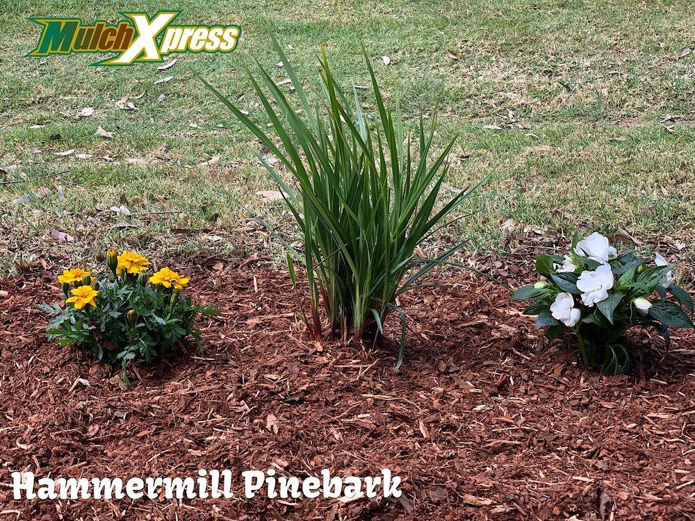 Hammermil Pinebark1.jpg