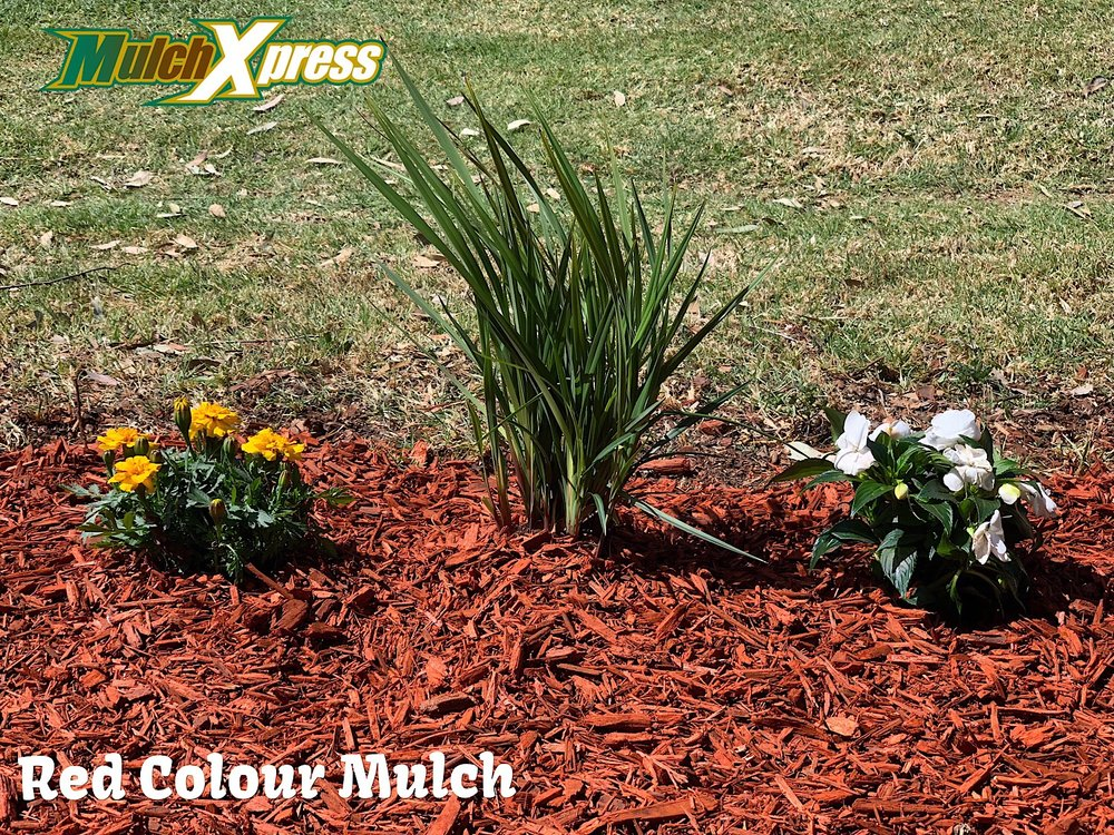 Red Colour Mulch1.jpg