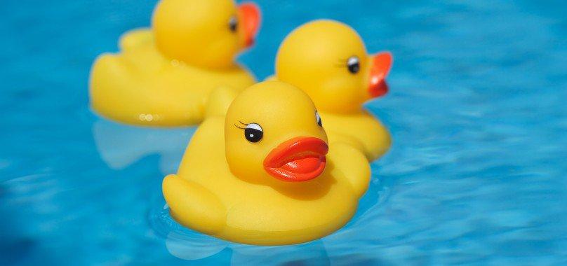 Op 17 juni 2017 organiseert JCI Gouda een Duckrace voor de Linda Foundation.  Lees meer