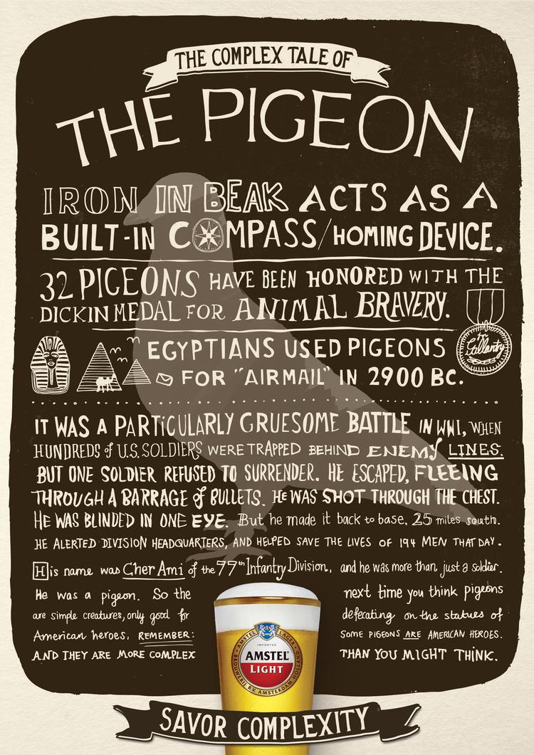 AMSTEL_Pigeon_041212.jpg