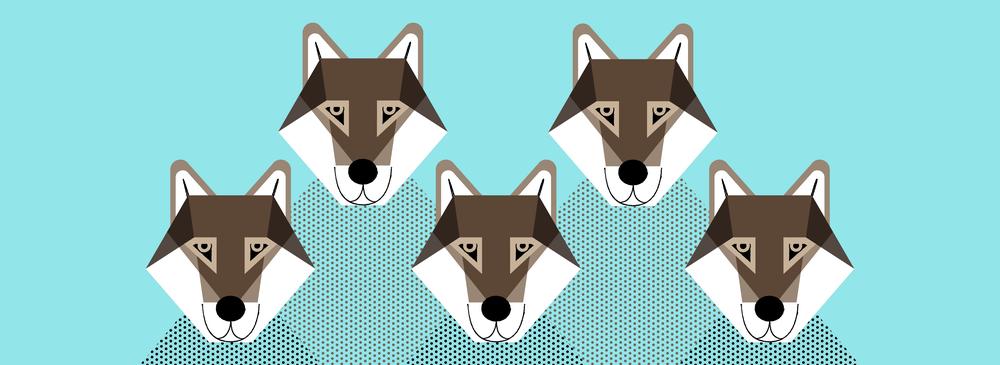 WebBanner_Wolves-05.png