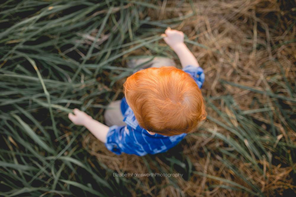 childrens-photographer-in-roanoke-va