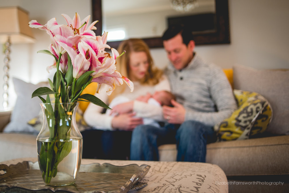 roanoke virginia photographer for newborn families