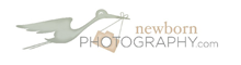 Roanoke Newborn Photographer Member