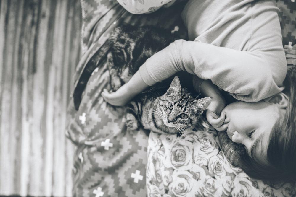 child_sleeping_with_kitten_blacksburg_lifestyle_photographer