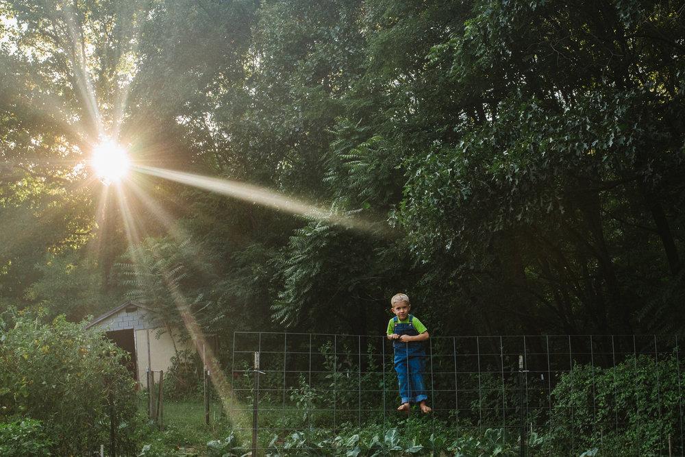 boy climbing fence at sunset