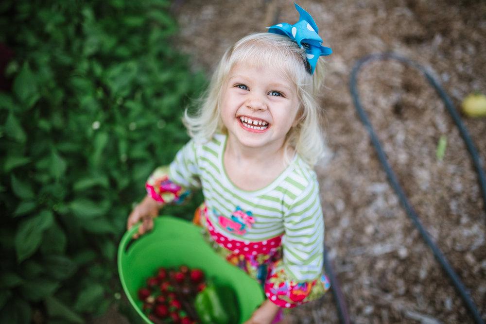 little girl gardening with bucket of tomatos