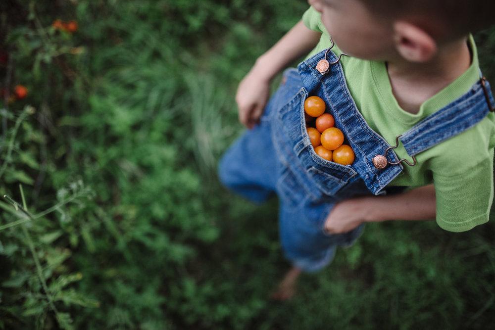 boy-tomato-pockets-roanoke-children's-photographer