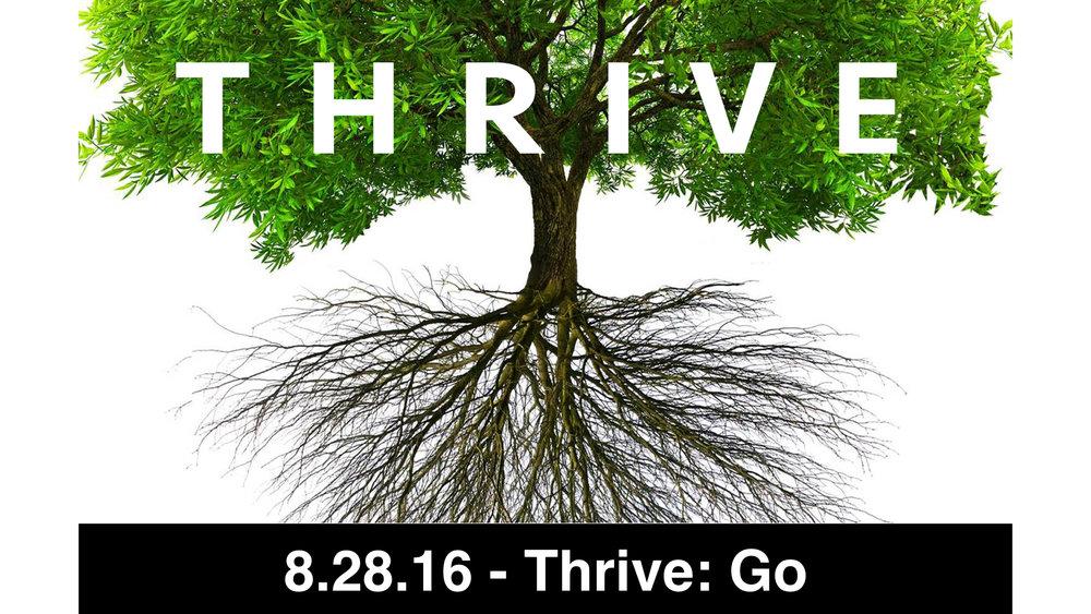 08-28-16 - Thrive: Go