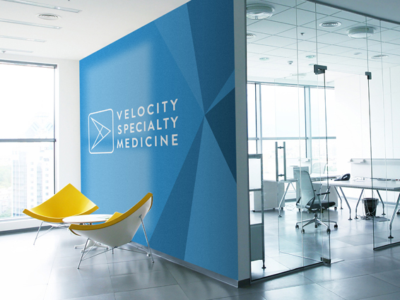 Velocity Specialty Medicine - Company Branding including business cards