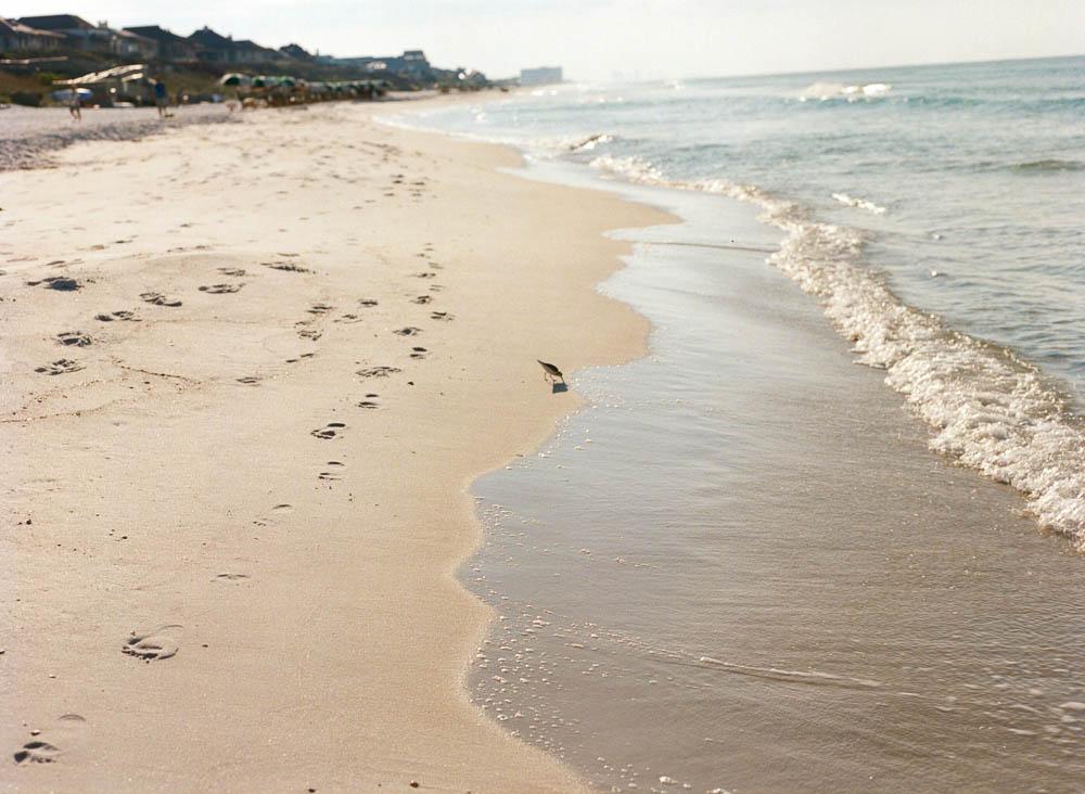 30a editorial and commercial photographer rosemary beach ©2016abigailbobophotography-22.jpg