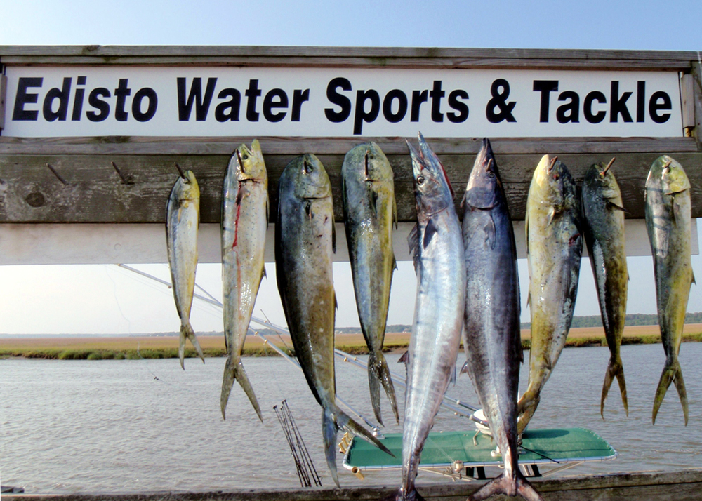 Edisto_Watersports