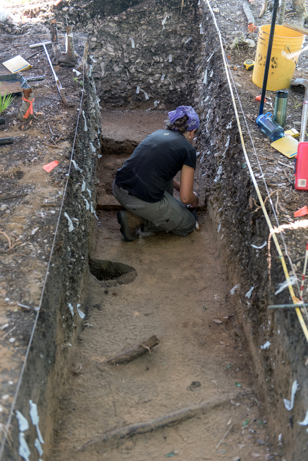 Excavating the shell midden.