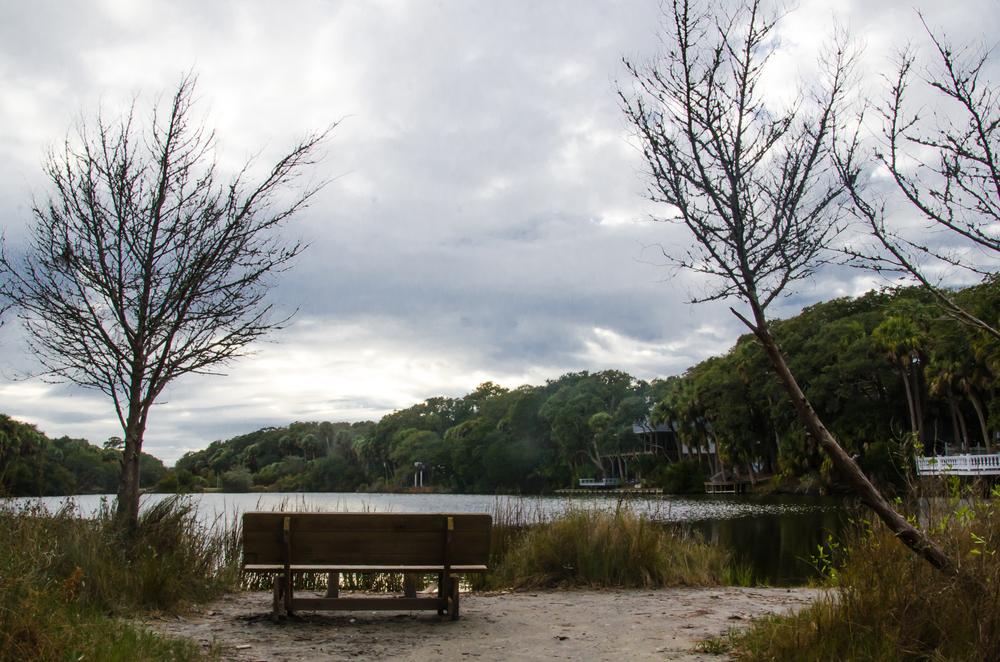Burley L. Lyons Park