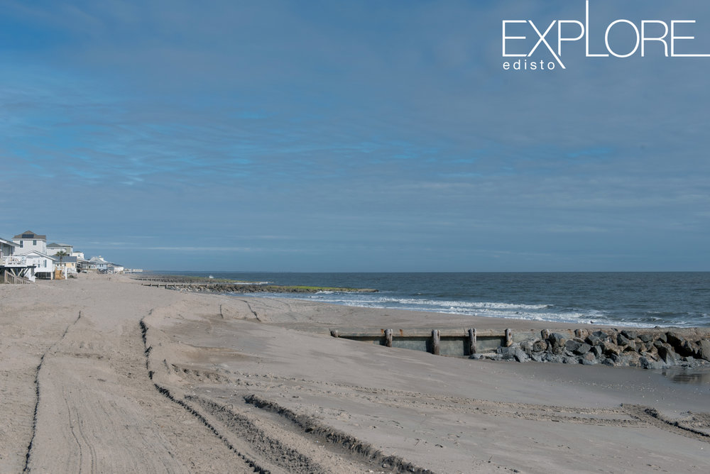 Tire tracks running down the beach at Edisto Beach.