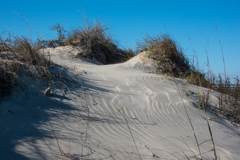 Example of a Yellow Dune.