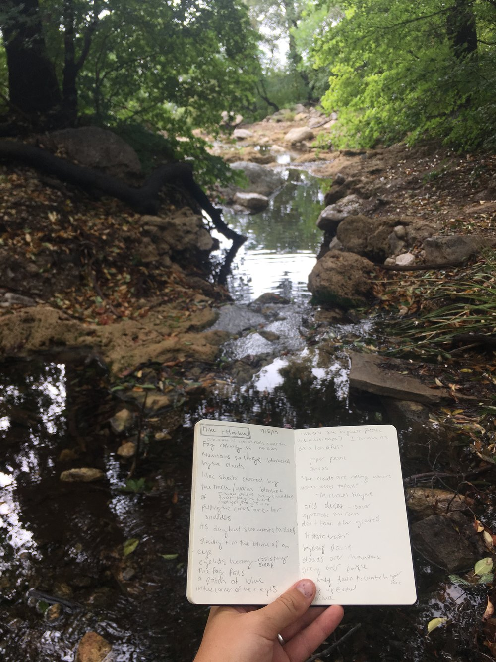 Notes from the hike