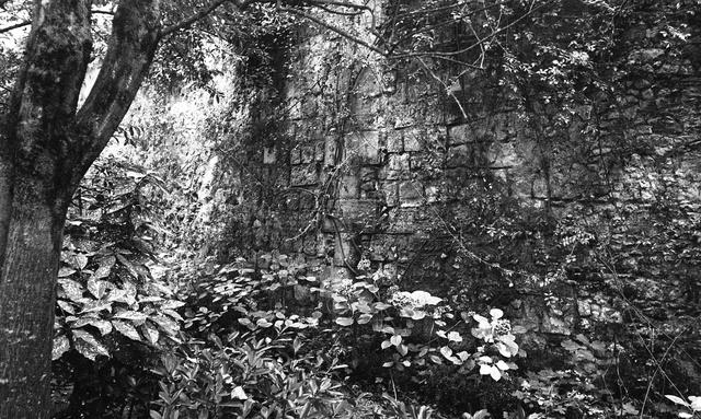 Des murs qui portent ton souffle.