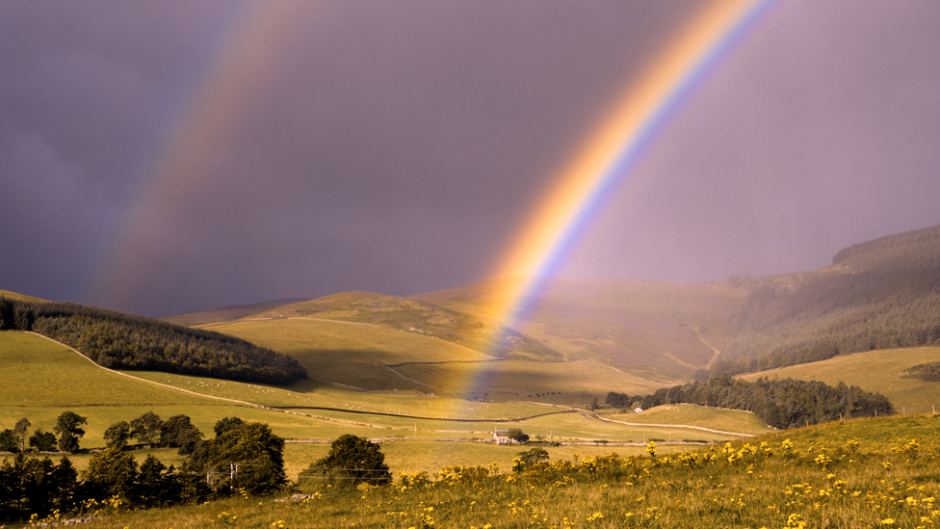 A rainbow and landscape as seen through a colorblind person's eyes. (Photo courtesy of EnChroma)