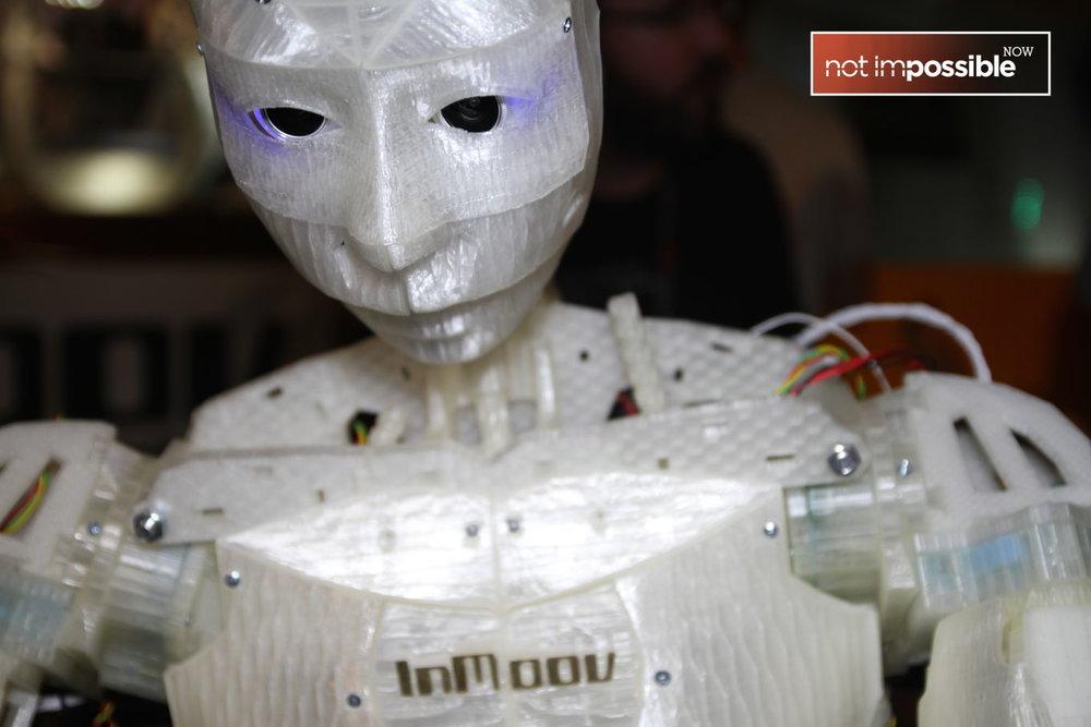 Kevin Water's InMoov bot