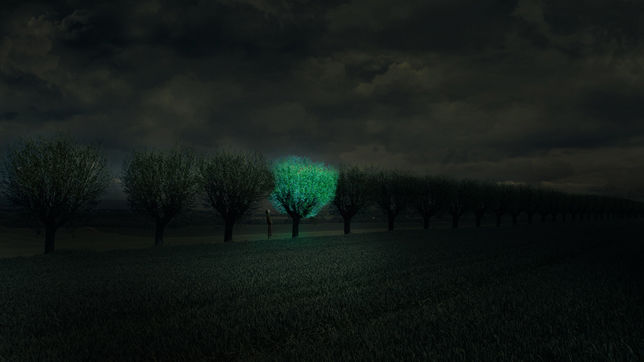 Photo Credit: Studio Roosegaarde