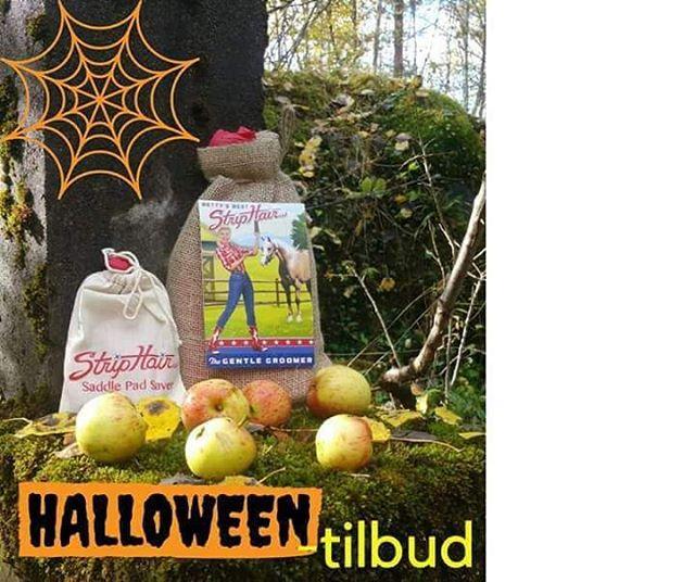 Årets skumleste halloween-tilbud finner du hos oss 😱👻 Kjøp et StripHair Gentle Grooming Kit og få med en Saddle Pad Saver for kun kr. 49,- (veil. pris 179,-). 😄🐴👍 Tilbudet finner du her: http://www.nordichorseequipment.com /produkter/striphair-halloweentilbud Halloween offer!! Buy a StripHair Gentle Grooming Kit and get a Saddle Pad Saver for only 49,- n.kr @striphair  #striphair#gentlegroomer#gentlegroomingkit#brush#shedding#røyte#coat#pels#hår#norge#sverige#horsesofinstagram#instahorses#
