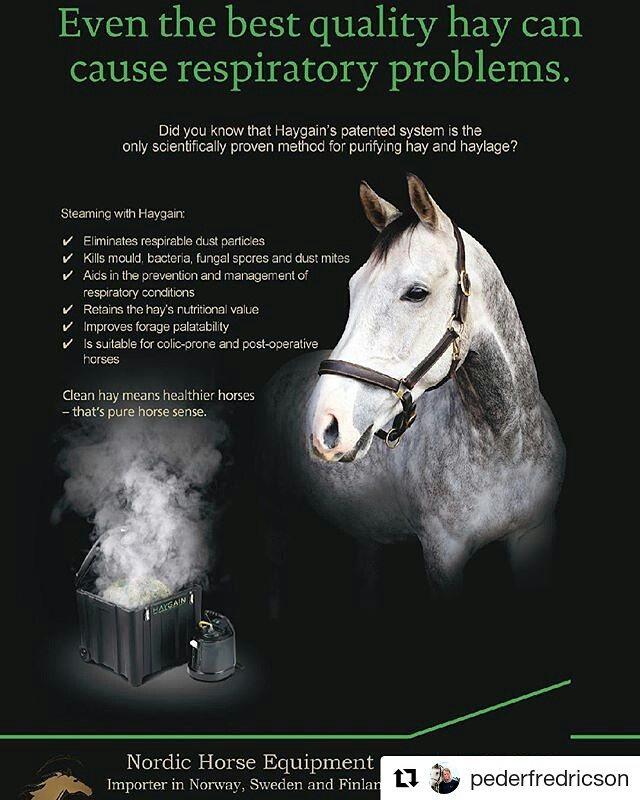 #Repost @pederfredricson (@get_repost) ・・・ Thanks @nordic_horse_equipment for top service and the haygain. #nordic_horse_equipment #Repost @pederfredricson (@get_repost) ・・・ Vi er veldig stolte og glade over å ha inngått et samarbeid med Peder Fredricson😊Peder anvender Haygain steamer til sin hest All In og er svært fornøyd👍 Han reiser rundt i hele verden og har alltid med seg sin steamer. Slik sikrer han at All In har rent grovfôr til enhver tid. Ikke en dag uten Haygain for All In 🐴  We are very proud and pleased to have partnered with Peder Fredricson😊Peder uses Haygain steamer for his horse All In and are very satisfied👍He travels around the world and always has his steamer with him. This ensures that All In always have clean feed. Not a day without Haygain for All In🐴 @haygain @pederfredricson @grevlundashowjumping
