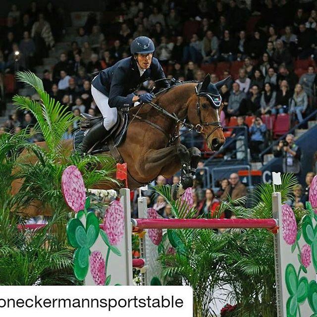 For en ekvipasje!!😃 Henrik og Mary Lou gjør det igjen! I år som i fjor vinner de verdenscupen😀🐴 Vi er imponert og supertstolt av vår dyktige sponsorrytter👍Dette blir et spennende år fremover🏆 Gratulerer så mye, @henrikvoneckermann 🎉 @haygain  #haygain#haysteamer#steamedhay#haylage#healthyhorse#norge#sverige#finland#instahorses#horsesofinstagram#welovehorses#hesterbest#hest#ghs2018#winners#poweredbyhaygain  #Repost @voneckermannsportstable Mary Lou did it again! Thank you to everyone who helped me make this happen 😊 #ghs2018 #sunday 📷 @jenny_abrahamsson / @worldofshowjumping