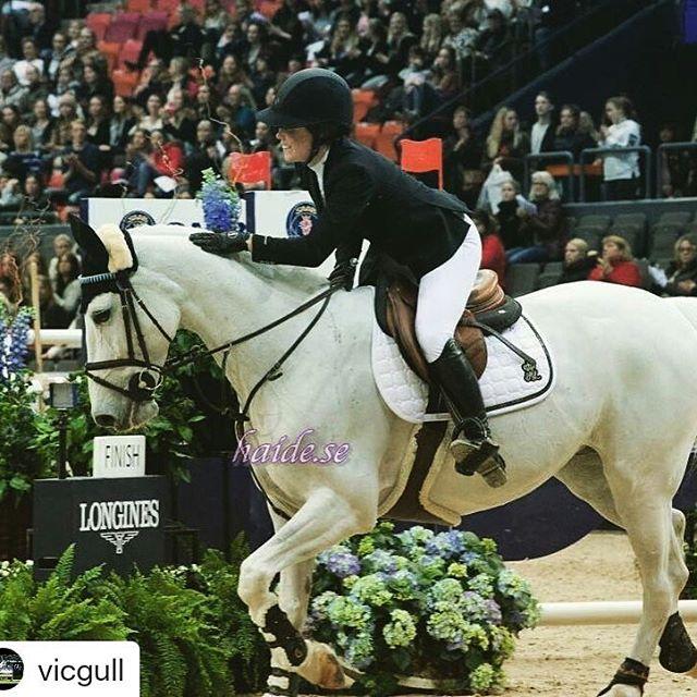 Victoria har de siste ukene deltatt i både AEG og Gothenburg Horse Show med strålende resultater😃👍Her er det bare å følge med fremover👉Girlpower🐴 Gratulerer så mye, Victoria🏆🎉 @haygain @vicgull  #haygain#haysteamer#steamedhay#haylage#healthyhorse#norge#sverige#finland#sprangridning#horsesofinstagram#instahorses#hesterbest#welovehorses#winners#poweredbyhaygain#hestefrelst#ghs2018  #Repost @vicgull • • • The smile says it all💜#savedmyday #beatpony #Diva#kingsland #kentucky 6 place in Gothenburg 🙌🏻🌟