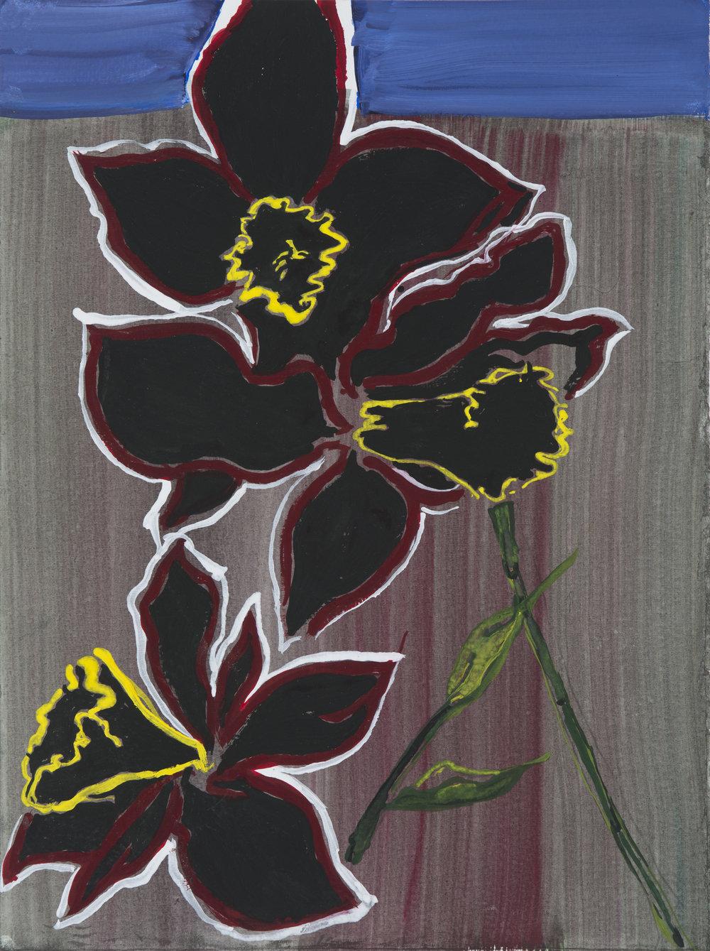 Black Daffodil 9 x 12 .jpg